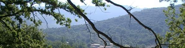 cropped-paysage1.jpg